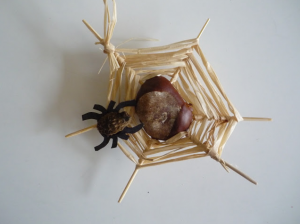 conker spiderweb craft